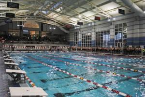 swim-start