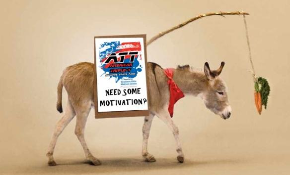 Donkey-carott-with-sign2
